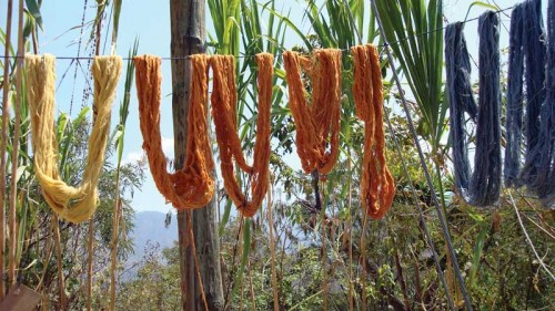 Threads dry in the sun after application of natural dyes