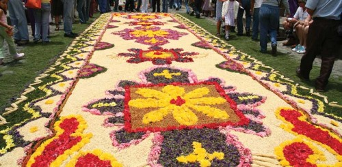 Processional Carpet (photo César Tián)