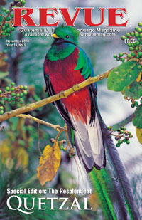 The Resplendent Quetzal (photo by Thor Janson)